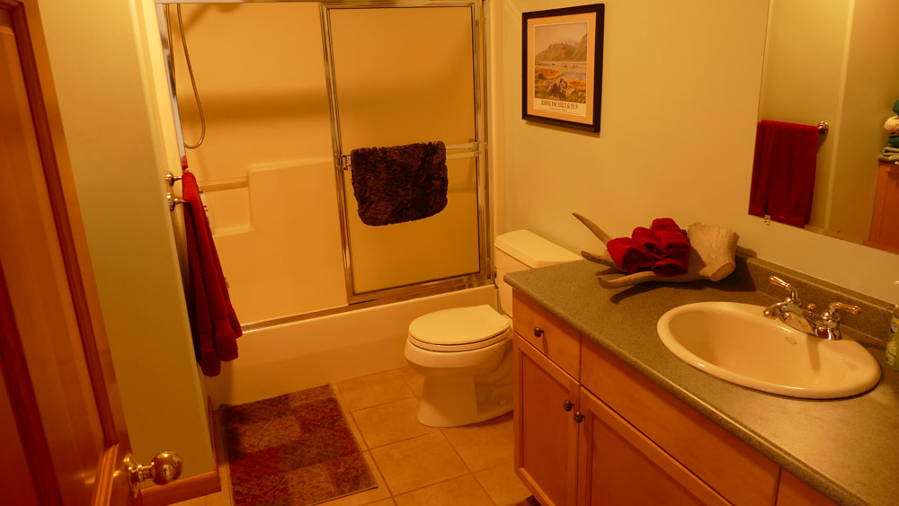 Vacation rental bathroom lynn view lodge vacation for Bathroom for rent